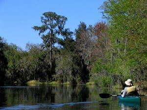 recreational activities Brandon, FL