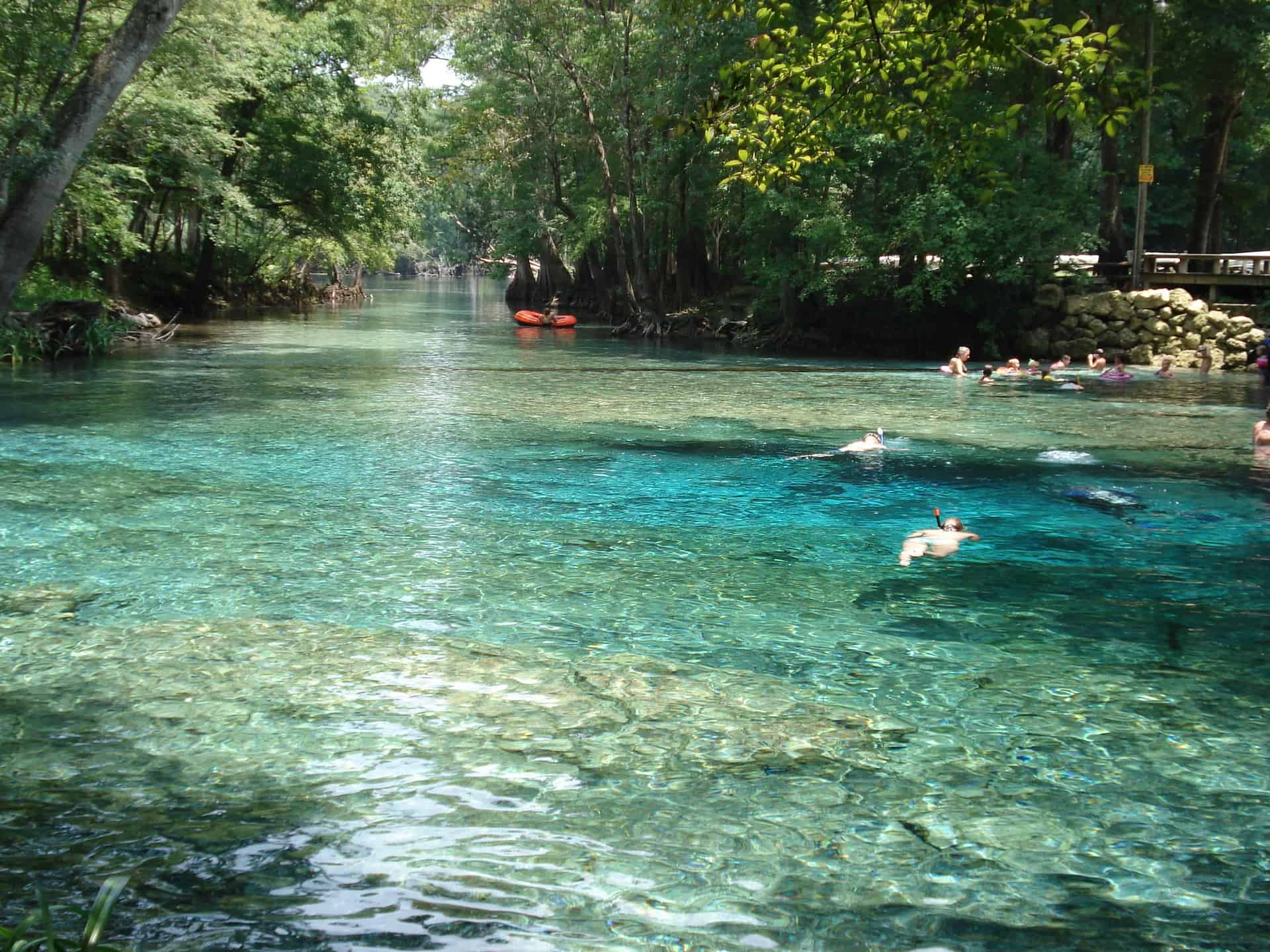 Top 5 Natural Springs Near Gainesville 2 College