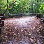 hiking trails Gainesville