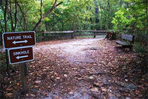 hiking trails Gainesville