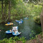 tubing near Gainesville