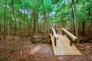Gainesville bike trails