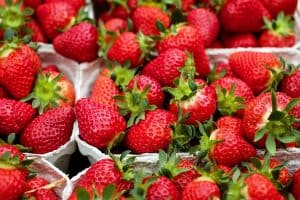 Spring Activities 4/6/ - 4/10: strawberries, festivals, and gainesville movies