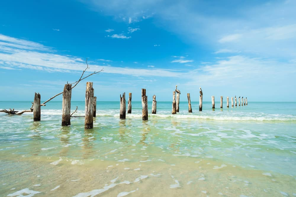 Pier off the beach in Florida on a sunny day.
