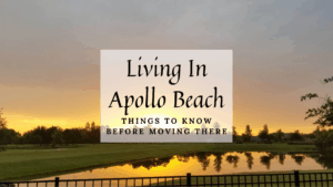 Living In Apollo Beach - Things to Know Before Moving to Apollo Beach