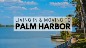 Living in & Moving to Palm Harbor