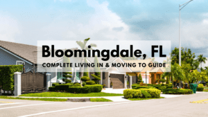 Bloomingdale, FL - Complete Living In & Moving To Guide